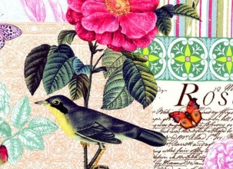 Belle Rose print